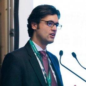 IOANNIS ORFANOS, Director, Investment Advisory, Green Value Associates